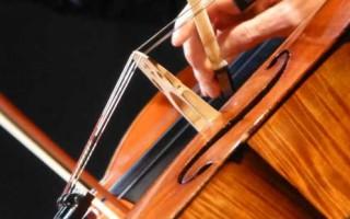 <strong>domenica 17/11/2013</strong><br />Quartetto Maffei &#038; Co.<br />Un&#8217;ora di musica &#8211; Primo incontro